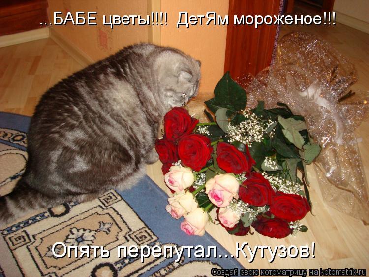 Котоматрица: ...БАБЕ цветы!!!!  ДетЯм мороженое!!! Опять перепутал...Кутузов!