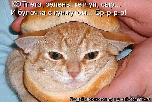 Котоматрица: КОТлета, зелень, кетчуп, сыр... И булочка с кунжутом... Бр-р-р-р!