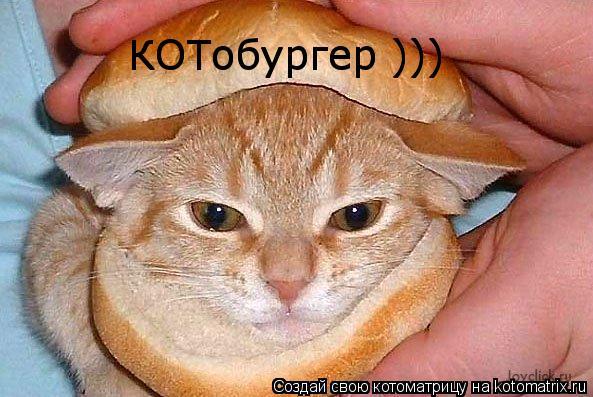 Котоматрица: КОТобургер ))) КОТобургер )))