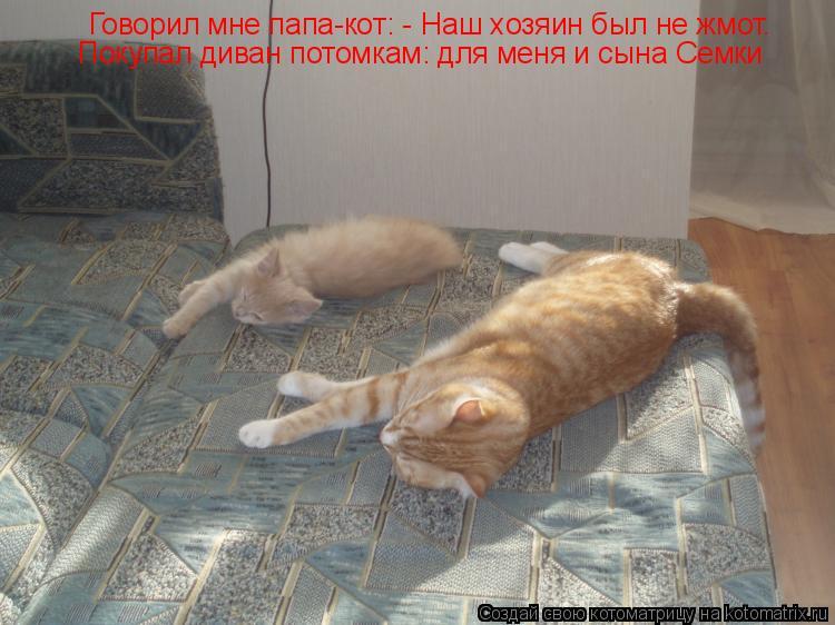 Котоматрица: Говорил мне папа-кот: - Наш хозяин был не жмот. Покупал диван потомкам: для меня и сына Семки
