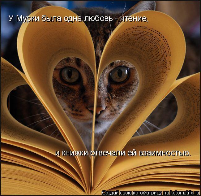 Котоматрица: У Мурки была одна любовь - чтение, и книжки отвечали ей взаимностью.