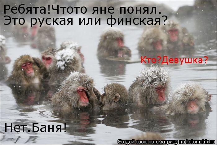 Котоматрица: Ребята!Чтото яне понял. Это руская или финская? Кто?Девушка? Нет.Баня!