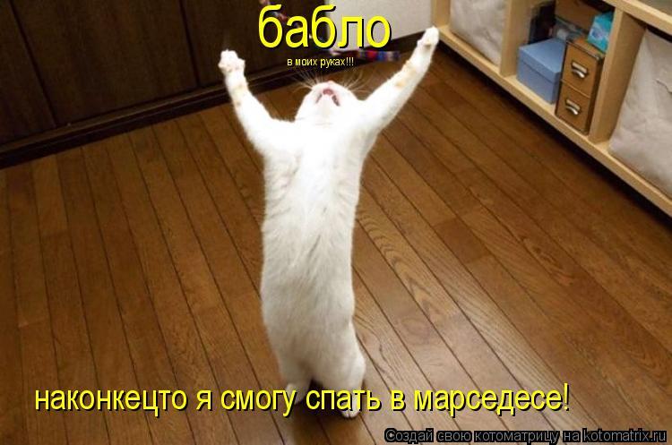 Котоматрица: в моих руках!!! наконкецто я смогу спать в марседесе! бабло
