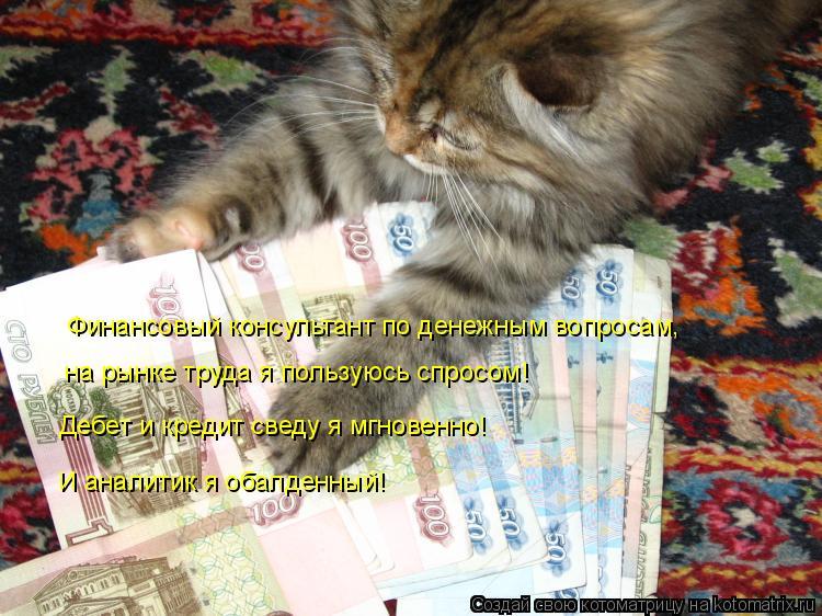 Котоматрица: Финансовый консультант по денежным вопросам, на рынке труда я пользуюсь спросом! Дебет и кредит сведу я мгновенно! И аналитик я обалденный!