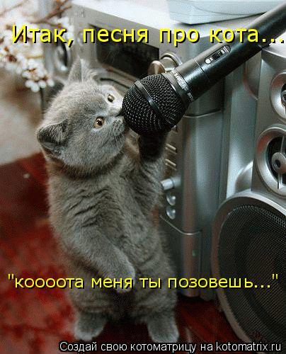 """Котоматрица: Итак, песня про кота... """"коооота меня ты позовешь..."""""""