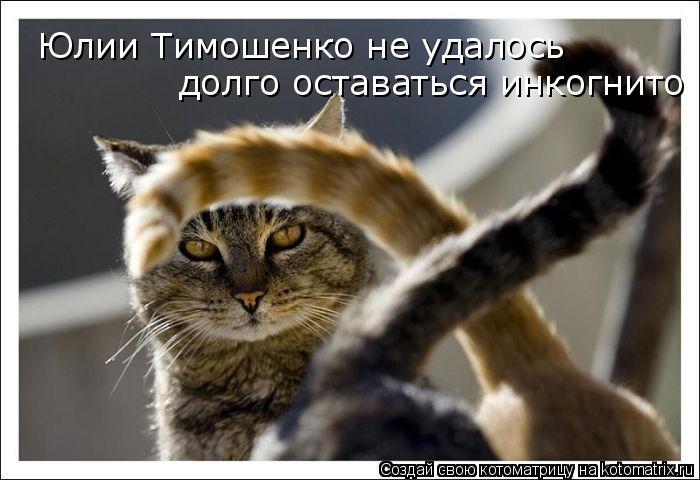 Котоматрица: Юлии Тимошенко не удалось  долго оставаться инкогнито