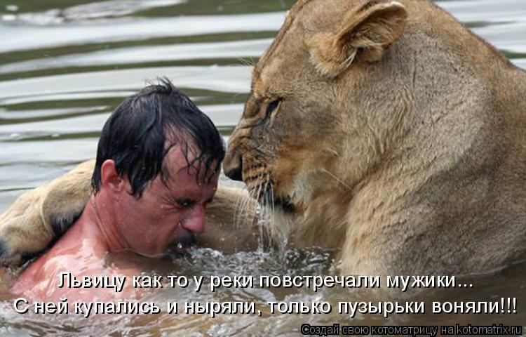 Котоматрица: Львицу как то у реки повстречали мужики... С ней купались и ныряли, только пузырьки воняли!!!