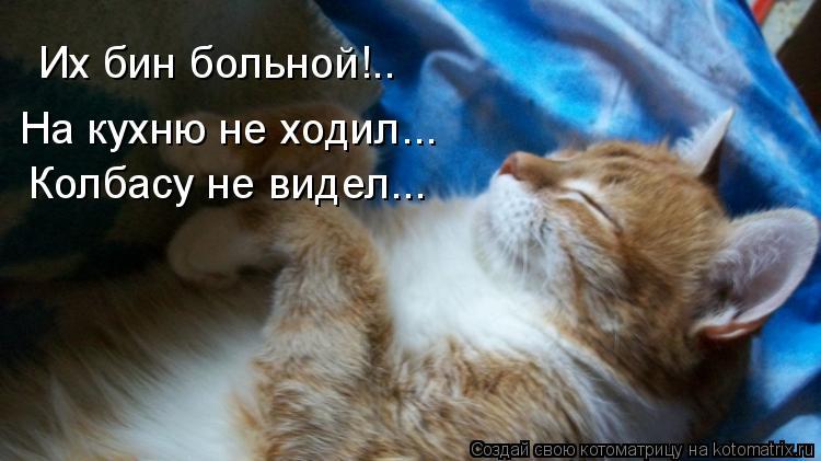 Котоматрица: Их бин больной!.. На кухню не ходил... Колбасу не видел...