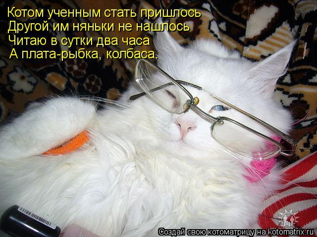 Котоматрица: Котом ученным стать пришлось Другой им няньки не нашлось Читаю в сутки два часа А плата-рыбка, колбаса.