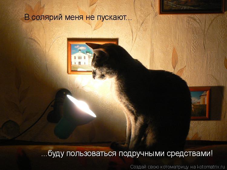 Котоматрица: В солярий меня не пускают... ...буду пользоваться подручными средствами!