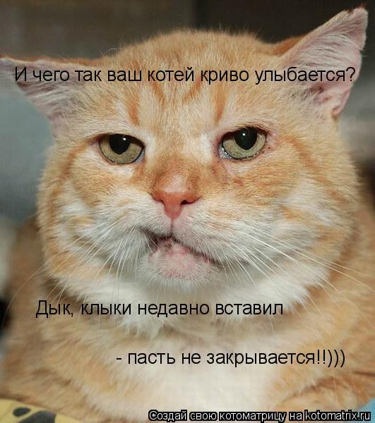 Котоматрица: И чего так ваш котей криво улыбается? Дык, клыки недавно вставил  - пасть не закрывается!!)))