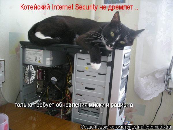 Котоматрица: Котейский Internet Security не дремлет... только требует обновления миски и рациона