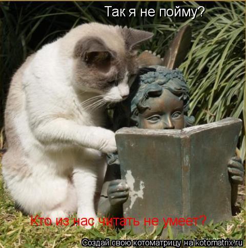 Котоматрица: Так я не пойму? Кто из нас читать не умеет?