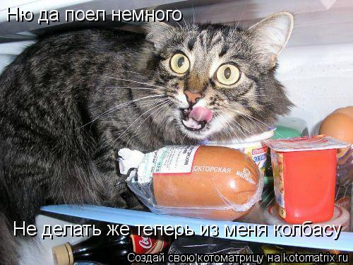 Котоматрица: Ню да поел немного Не делать же теперь из меня колбасу