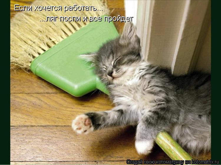 Котоматрица: Если хочется работать... ...ляг поспи и все пройдет