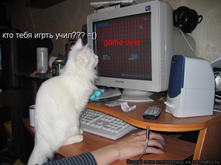 Котоматрица: game over кто тебя игрть учил??? =()