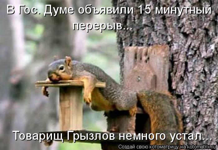 Котоматрица: В Гос. Думе объявили 15 минутный  перерыв... Товарищ Грызлов немного устал...
