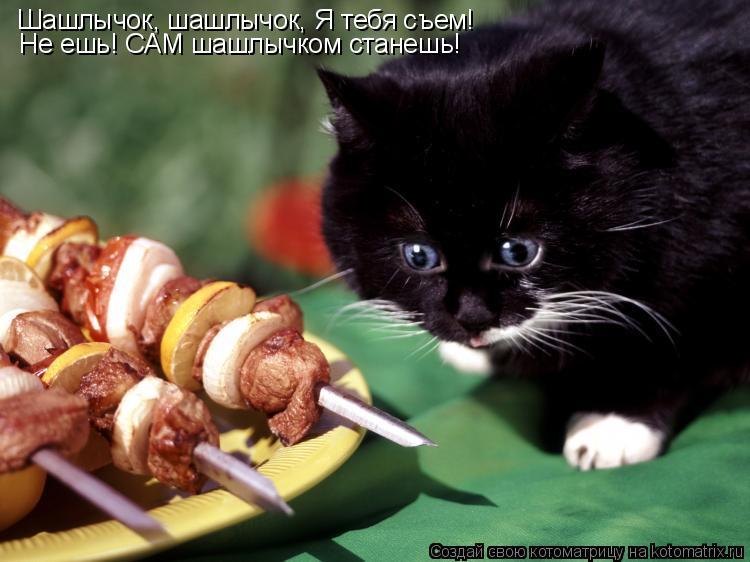 Котоматрица: Шашлычок, шашлычок, Я тебя съем! Не ешь! САМ шашлычком станешь!