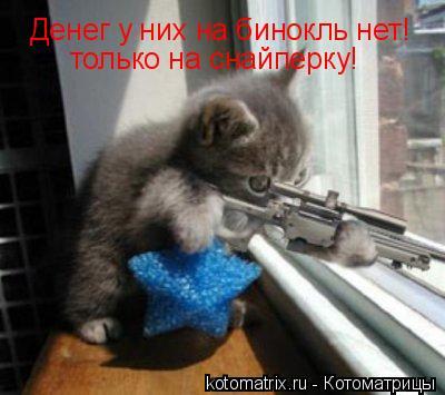 Котоматрица: Денег у них на бинокль нет! только на снайперку!