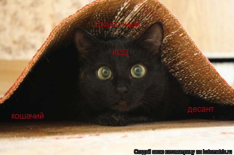 Котоматрица: кошачий сосисочный десант КСД