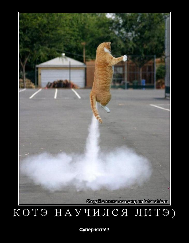 Котоматрица: котэ научился литэ) Супер-котэ!!!