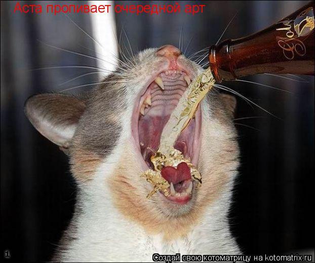Котоматрица: Аста пропивает очередной арт