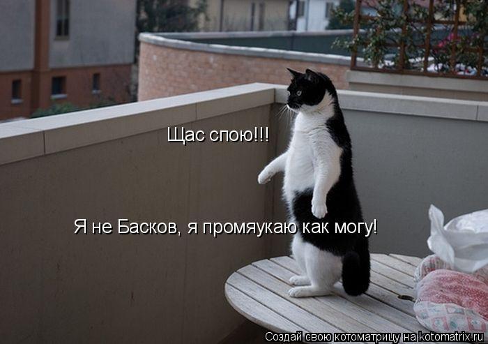 Котоматрица: Щас спою!!! Я не Басков, я промяукаю как могу!