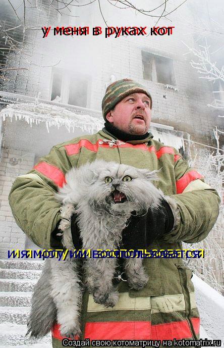 Котоматрица: у меня в руках кот  у меня в руках кот  и я могу им воспользоватся и я могу им воспользоватся