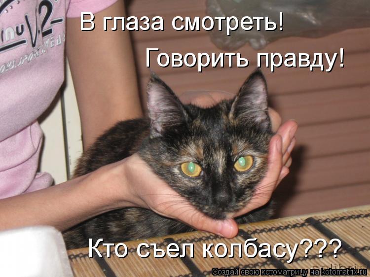 Котоматрица: В глаза смотреть! Говорить правду! Кто съел колбасу???