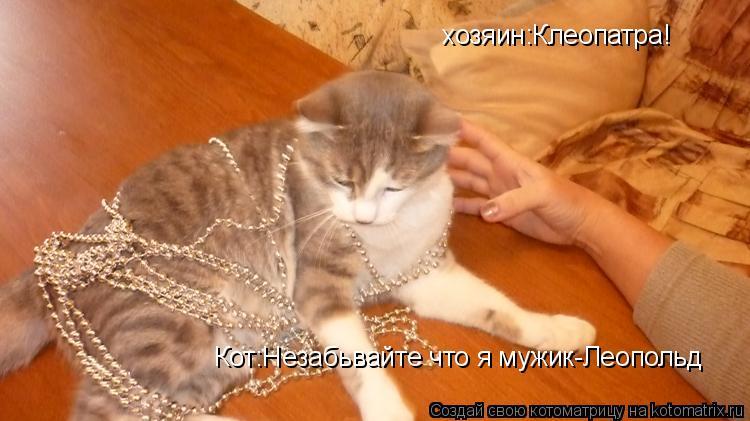 Котоматрица: хозяин:Клеопатра! Кот:Незабьвайте что я мужик-Леопольд