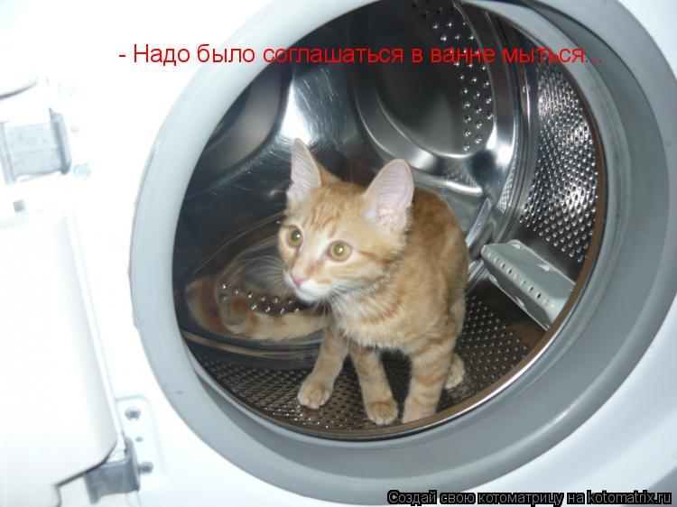 Котоматрица: - Надо было соглашаться в ванне мыться...