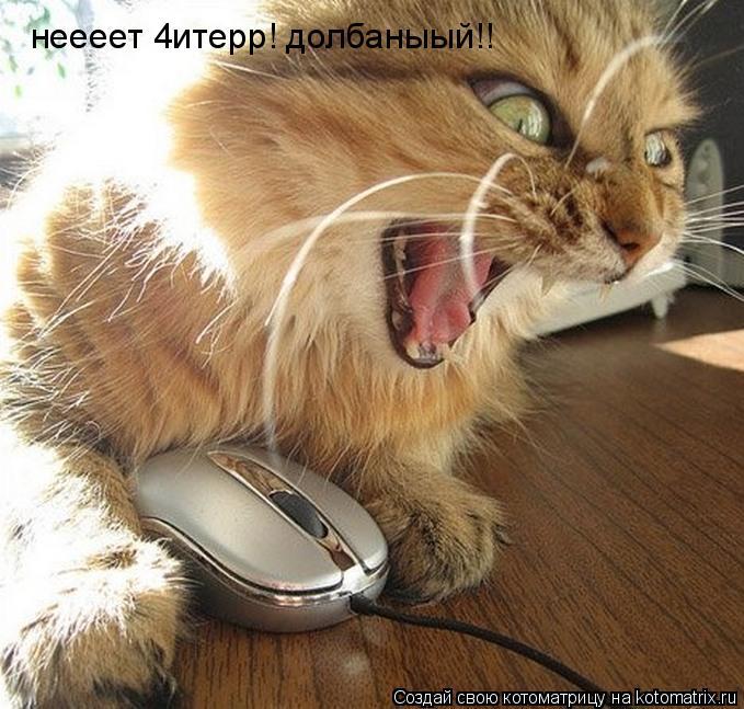 Котоматрица: неееет 4итерр! долбаныый!!