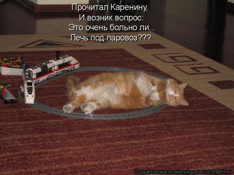 Котоматрица: Прочитал Каренину,  И возник вопрос: Это очень больно ли... Лечь под паровоз???