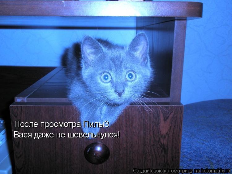 Котоматрица: После просмотра Пилы3  Вася даже не шевельнулся!