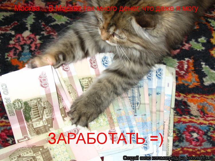Котоматрица: Москва... В Москве так много денег, что даже я могу ЗАРАБОТАТЬ =)