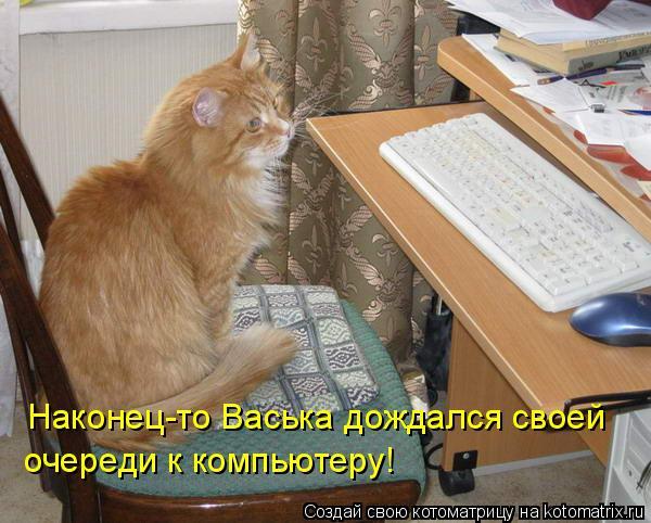 Котоматрица: Наконец-то Васька дождался своей  очереди к компьютеру!