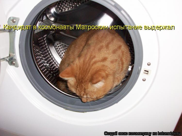 Котоматрица: Кандидат в космонавты Матроскин испытание выдержал