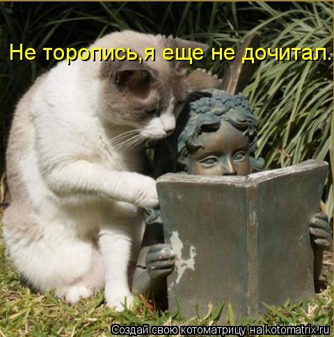 Котоматрица: Не торопись,я еще не дочитал..