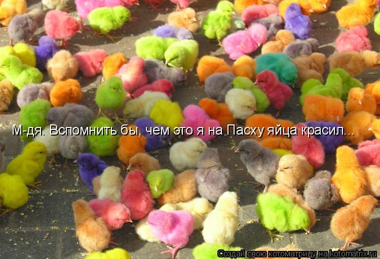 Котоматрица: М-дя. Вспомнить бы, чем это я на Пасху яйца красил...