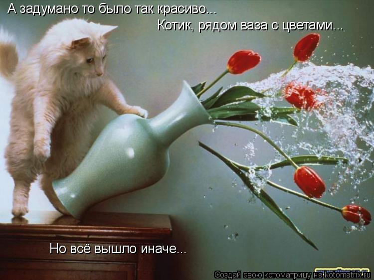 Котоматрица: А задумано то было так красиво...  Котик, рядом ваза с цветами... Но всё вышло иначе...