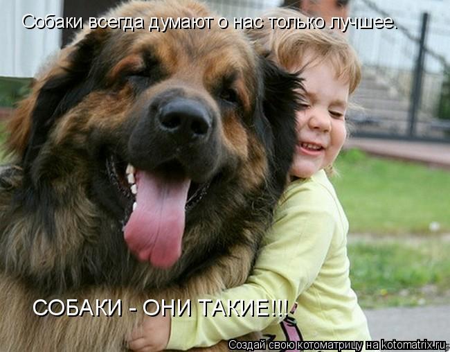 Котоматрица: Собаки всегда думают о нас только лучшее. СОБАКИ - ОНИ ТАКИЕ!!!
