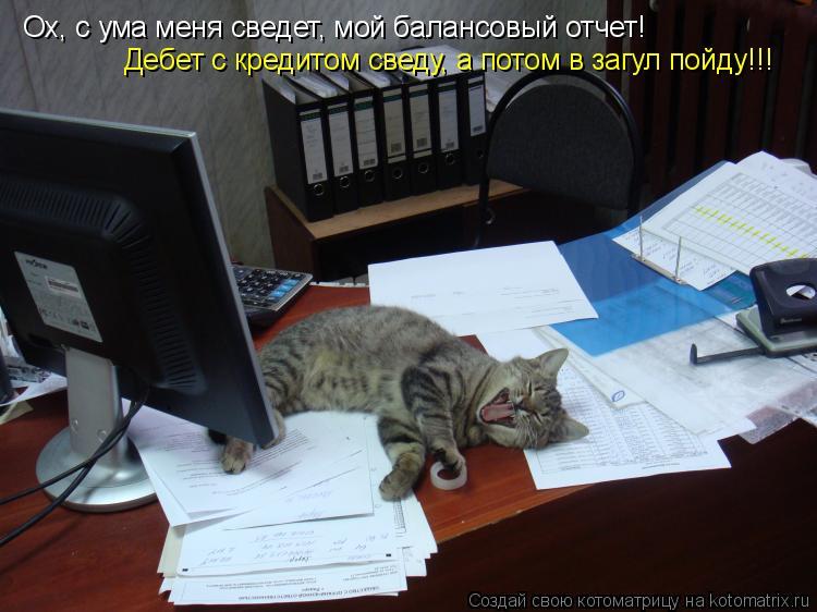 Котоматрица: Ох, с ума меня сведет, мой балансовый отчет! Дебет с кредитом сведу, а потом в загул пойду!!!