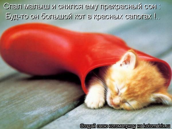 Котоматрица: Спал малыш и снился ему прекрасный сон : Буд-то он большой кот в красных сапогах !..