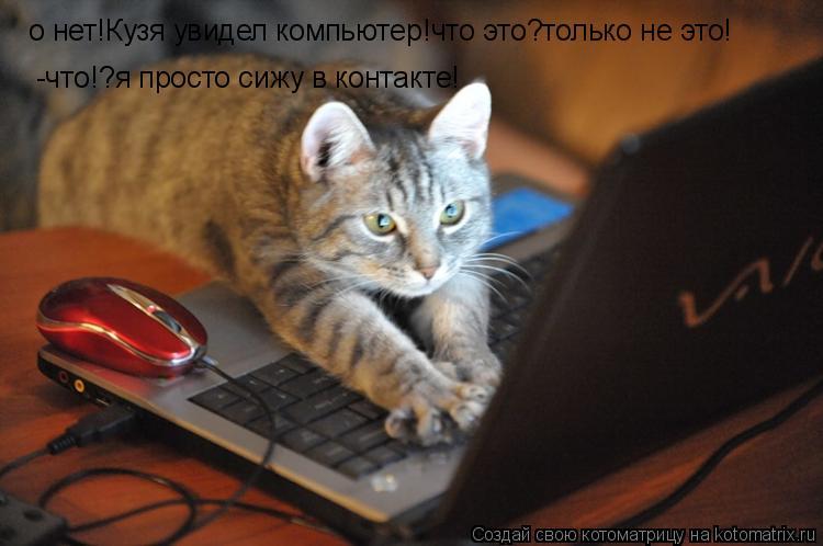 Котоматрица: о нет!Кузя увидел компьютер!что это?только не это! -что!?я просто сижу в контакте!