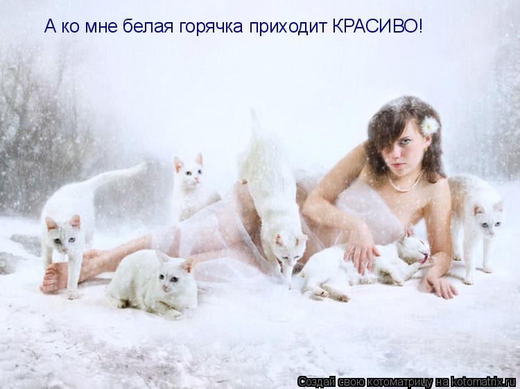 Котоматрица: А ко мне белая горячка приходит КРАСИВО!