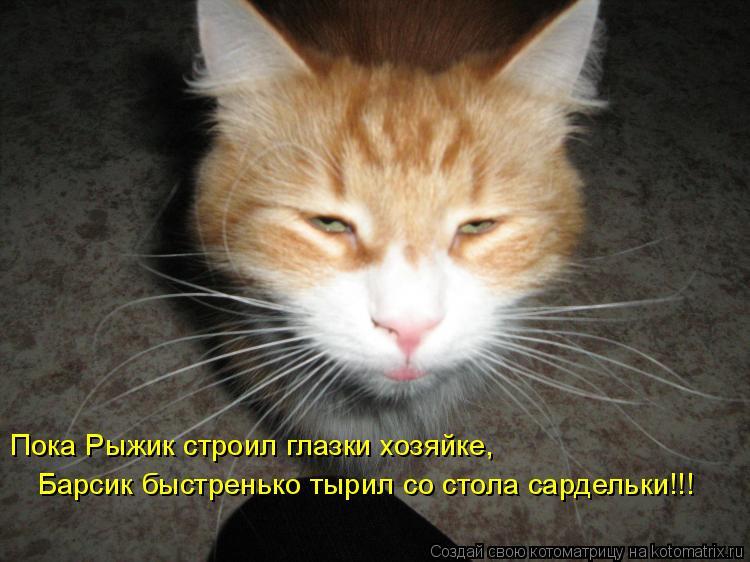 Котоматрица: Пока Рыжик строил глазки хозяйке, Барсик быстренько тырил со стола сардельки!!!