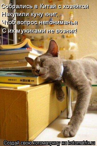 Котоматрица: Собрались в Китай с хозяйкой Накупили кучу книг, Чтоб вопрос непониманья С их мужиками не возник!