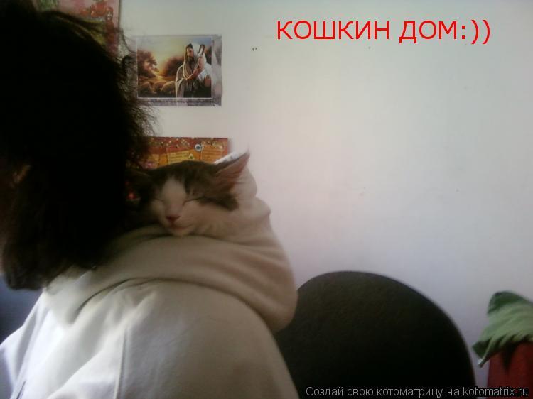 Котоматрица: КОШКИН ДОМ:))