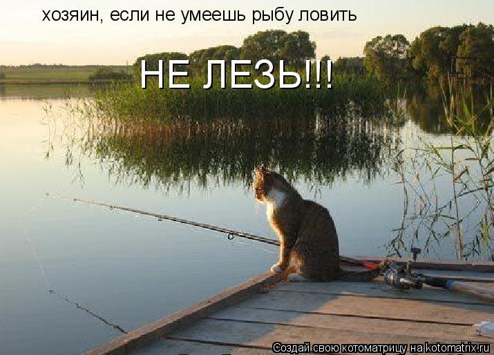 Котоматрица: хозяин, если не умеешь рыбу ловить НЕ ЛЕЗЬ!!!