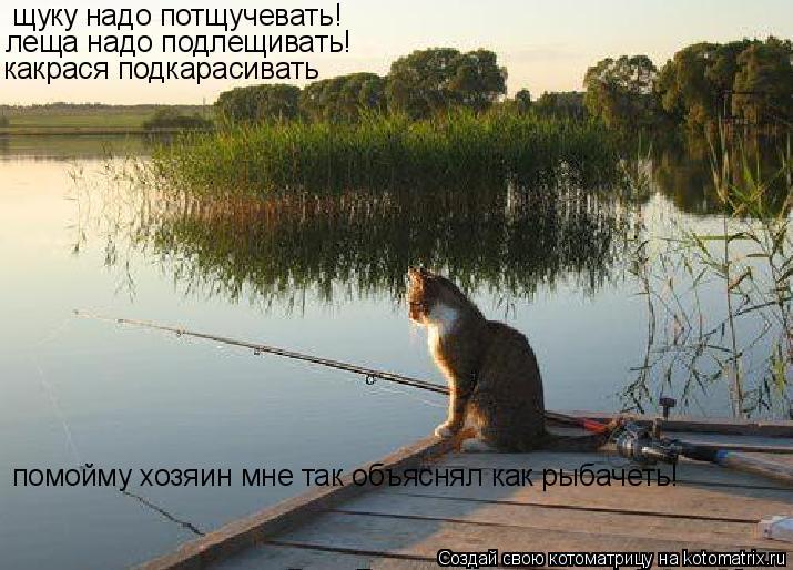 Котоматрица: щуку надо потщучевать! леща надо подлещивать! какрася подкарасивать помойму хозяин мне так объяснял как рыбачеть!
